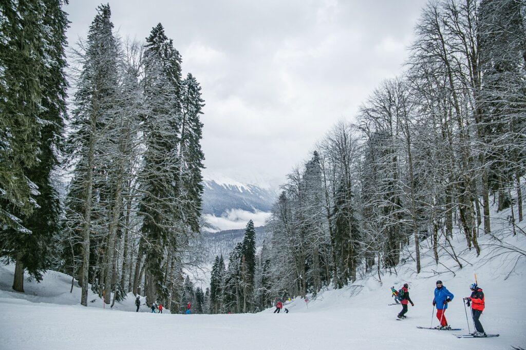 snow, skiing, people
