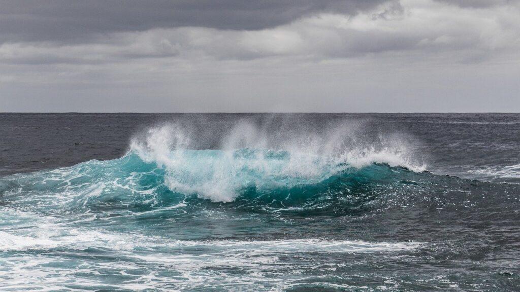 water, sea, waves