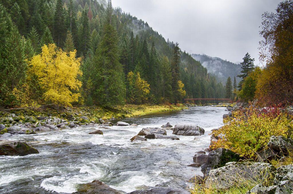 fall colors, lochsa river, idaho